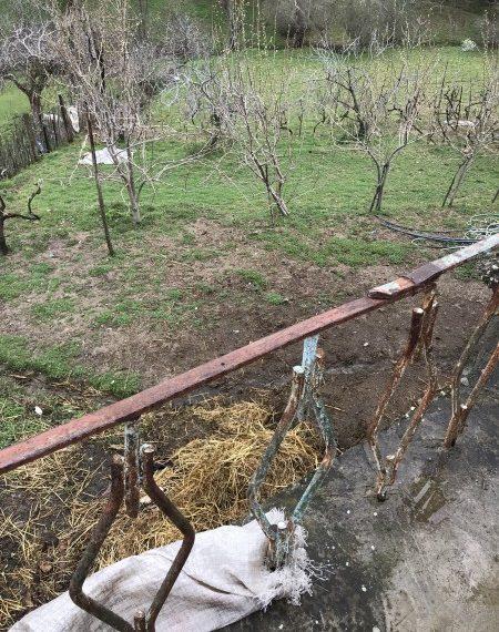 Shitet Shtepi fshati dhe truall ne Priske